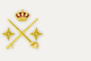 Hombrera General de Division Metalica